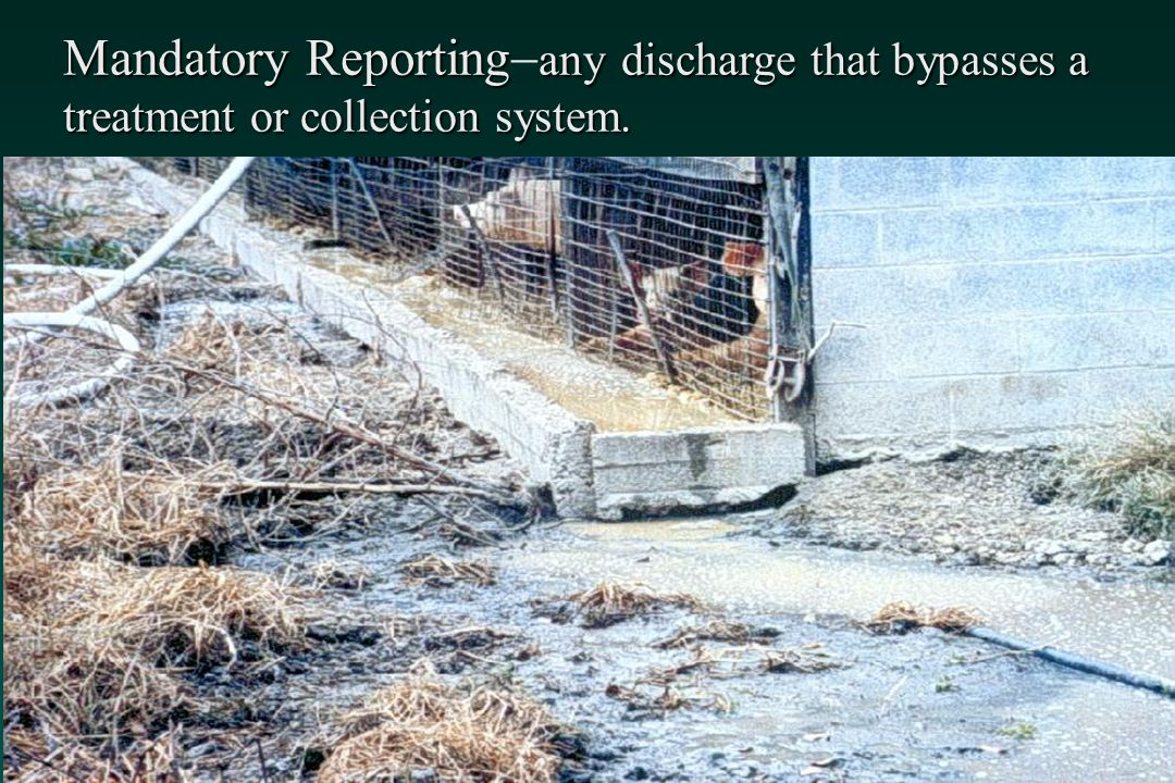 Mandatory Reporting-any discharge that bypasses a treatment or collection system.