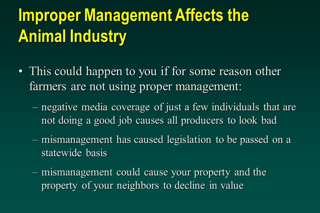 Improper Management Affects the Animal Industry