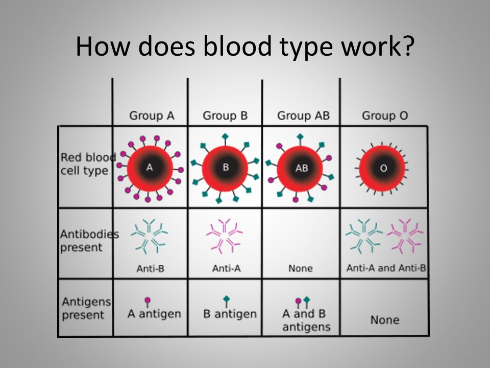 How does blood type work