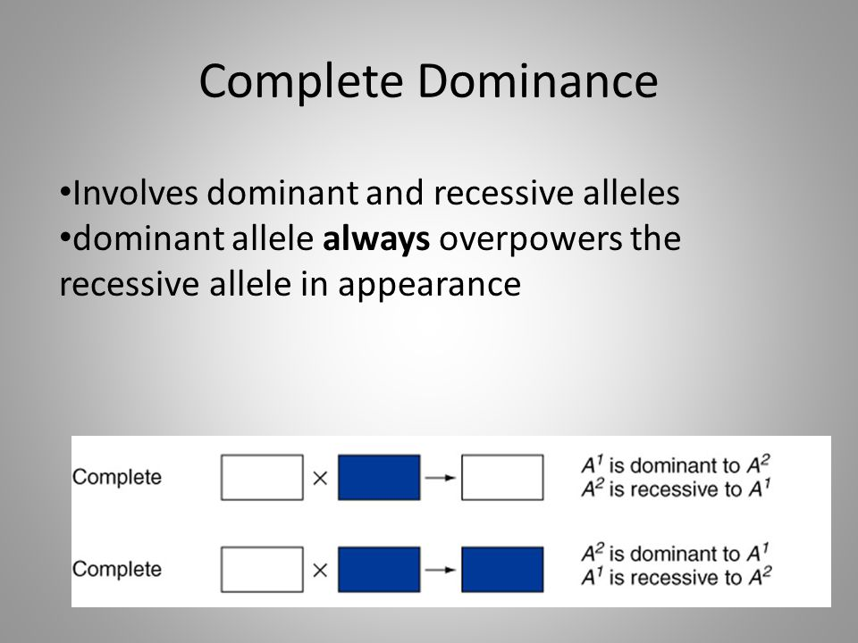 Complete Dominance Involves dominant and recessive alleles