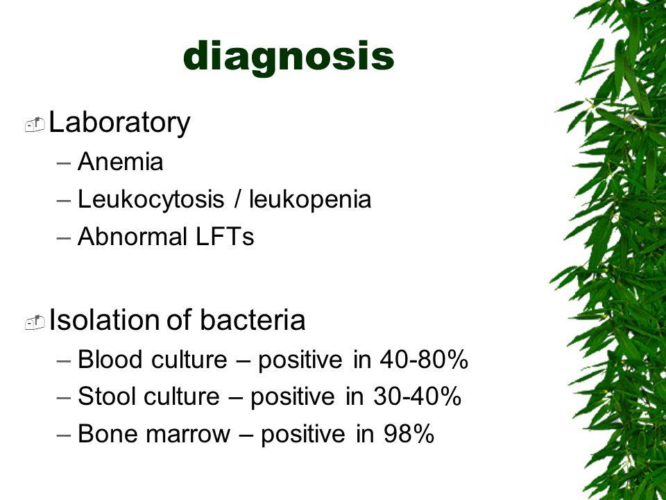 diagnosis Laboratory Isolation of bacteria Anemia