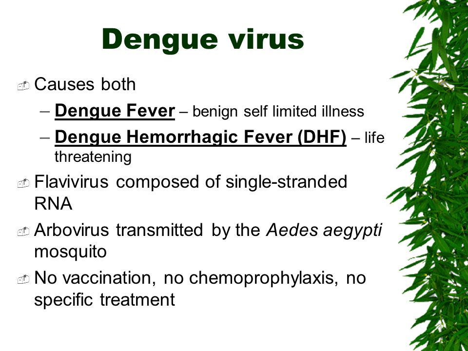 Dengue virus Causes both Dengue Fever – benign self limited illness