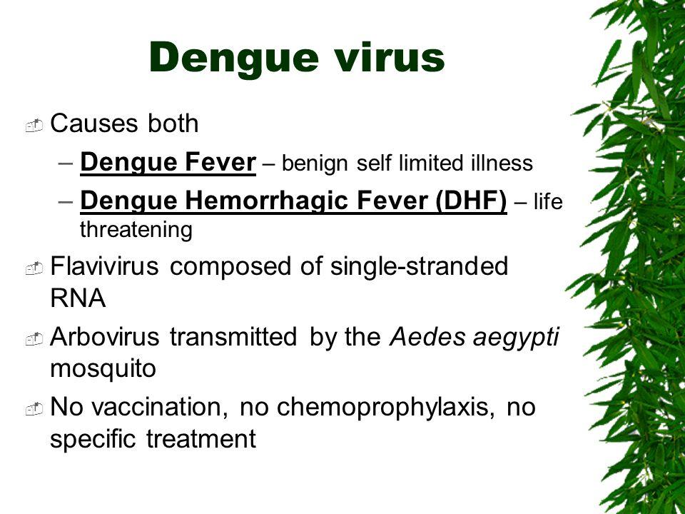 Dengue virus Causes both Dengue Fever – benign self limited illness