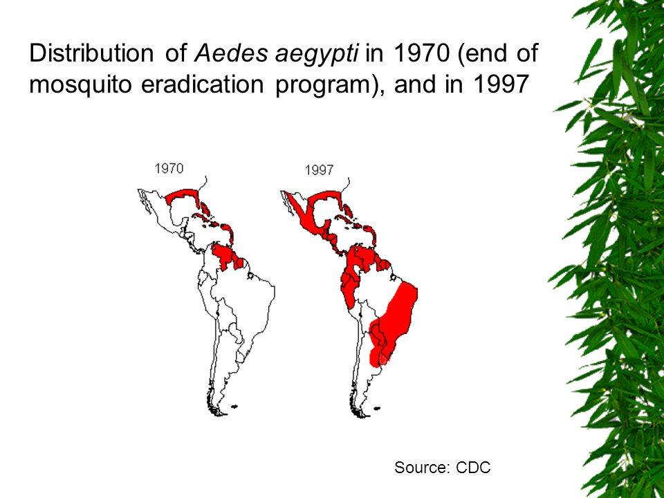 Distribution of Aedes aegypti in 1970 (end of mosquito eradication program), and in 1997