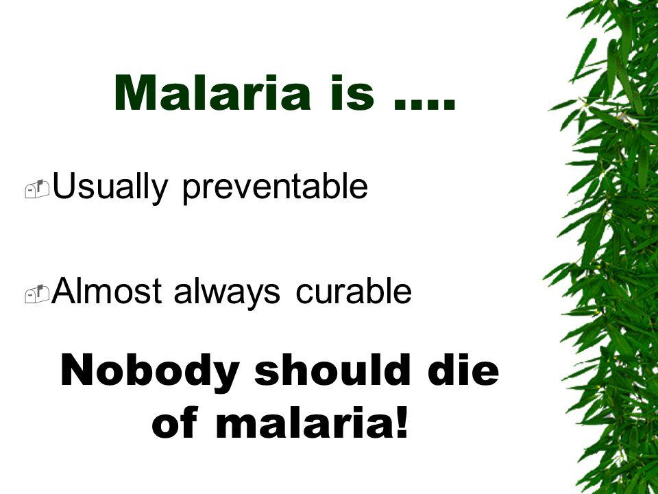 Nobody should die of malaria!