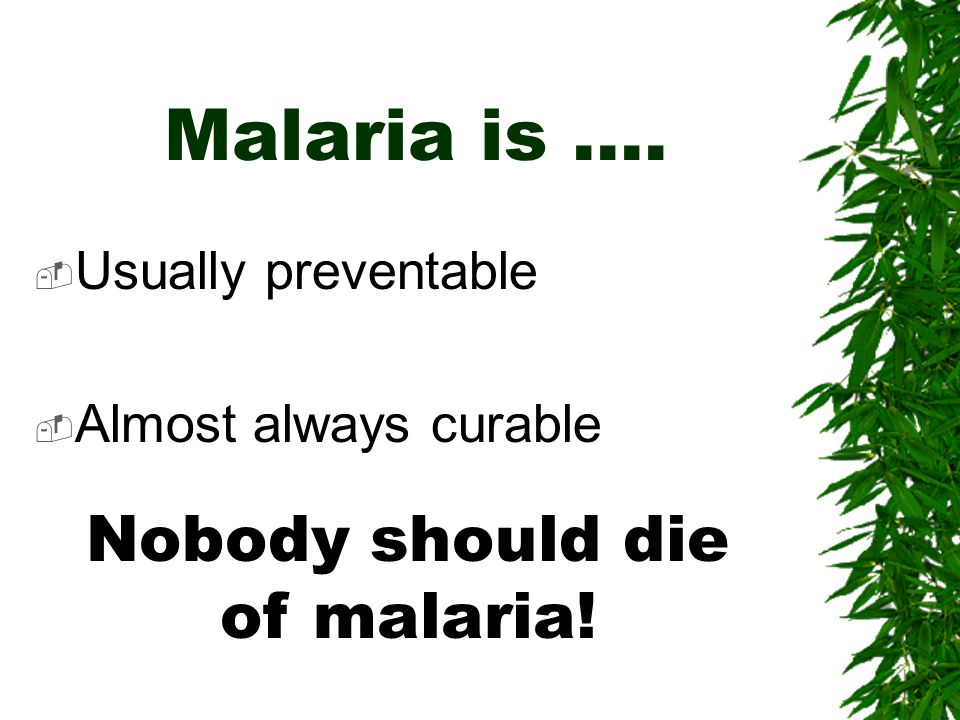 Nobody should die of malaria!
