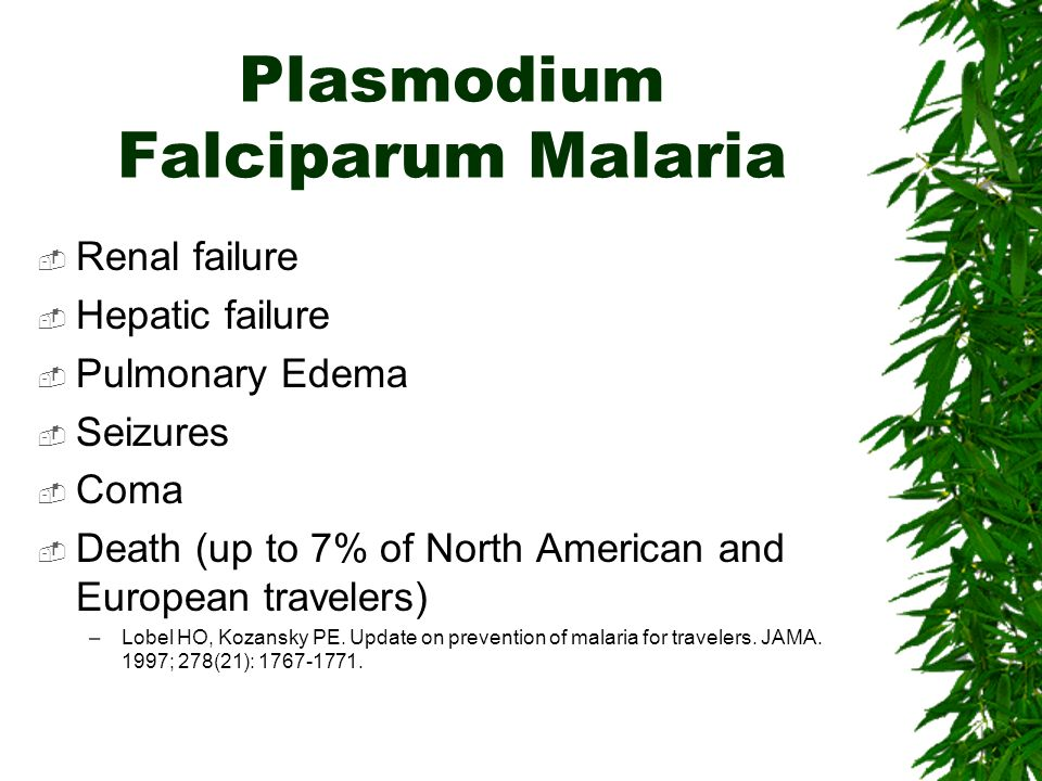 Plasmodium Falciparum Malaria