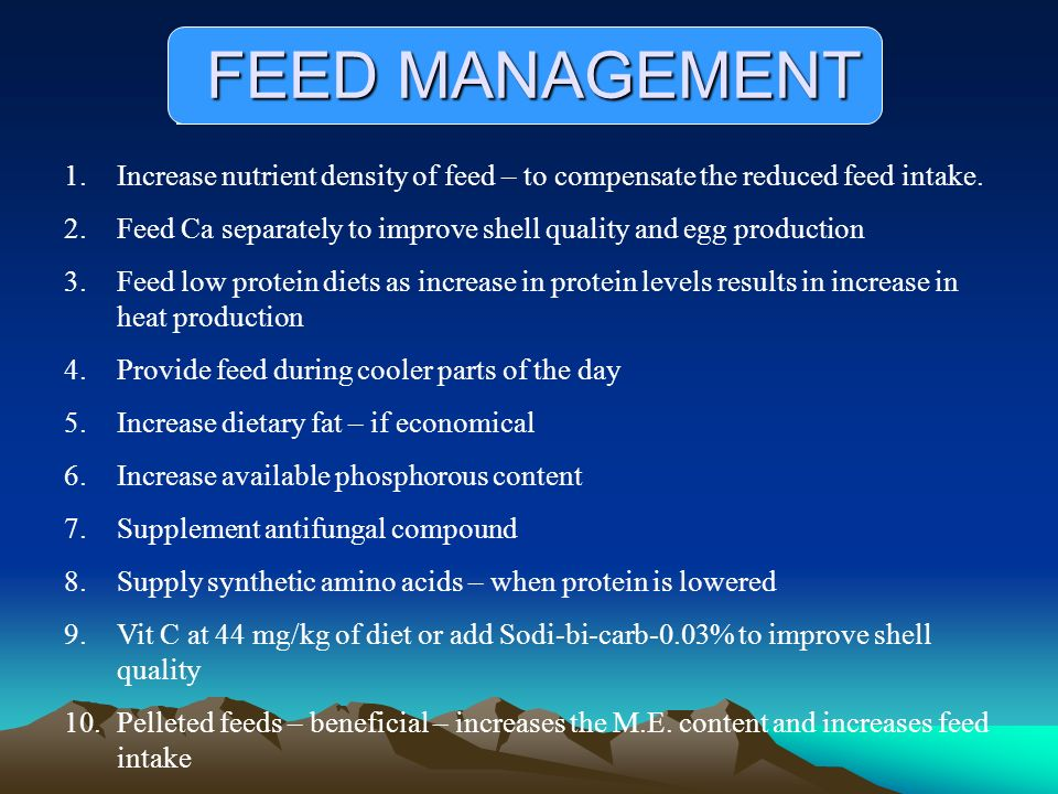 FEED MANAGEMENT Increase nutrient density of feed – to compensate the reduced feed intake.