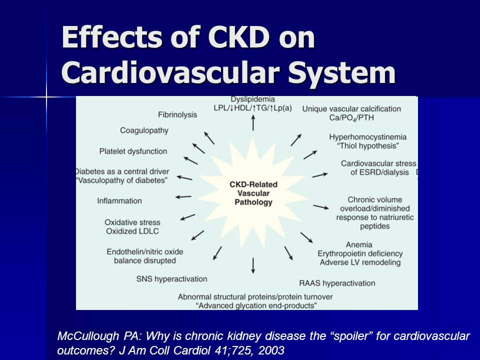 Effects of CKD on Cardiovascular System
