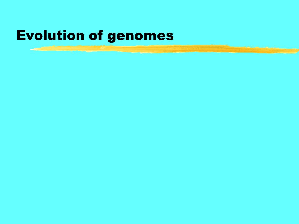 Evolution of genomes
