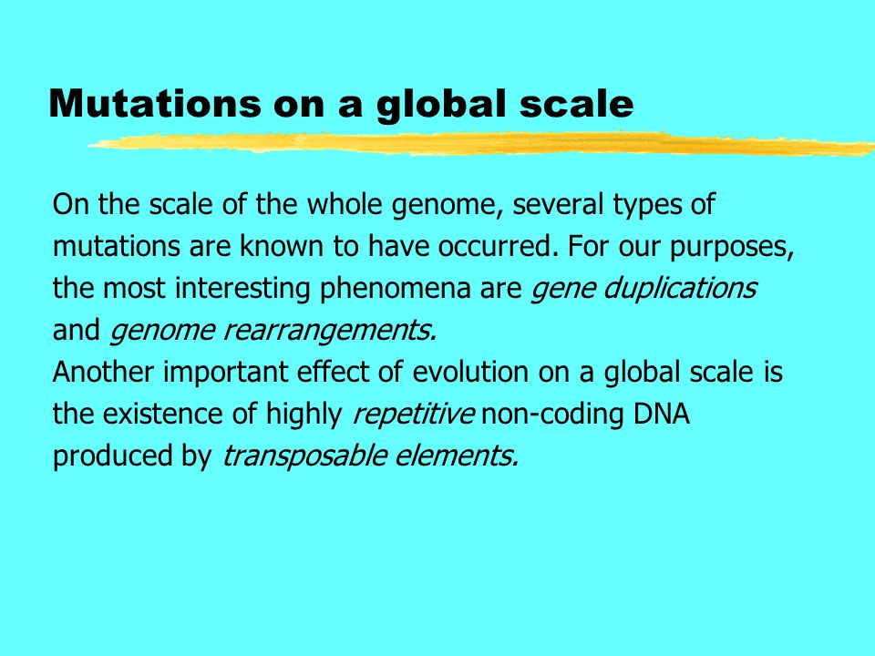 Mutations on a global scale