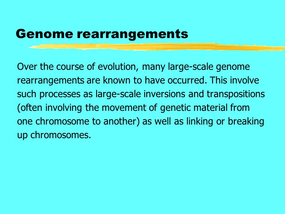 Genome rearrangements