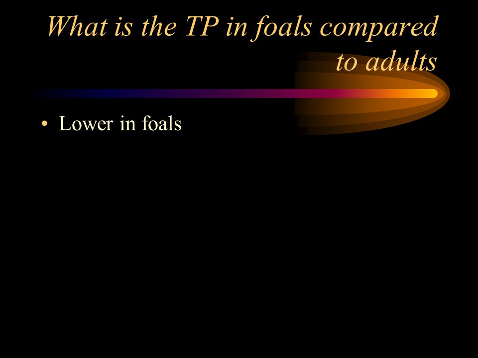What is the TP in foals compared to adults
