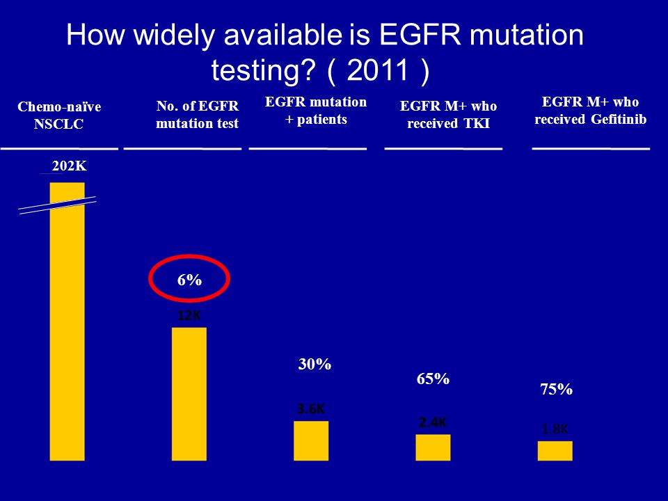 How widely available is EGFR mutation testing (2011)