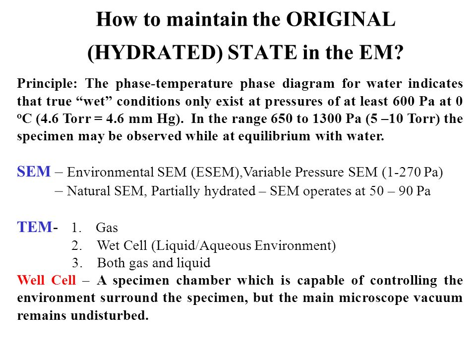 How to maintain the ORIGINAL (HYDRATED) STATE in the EM