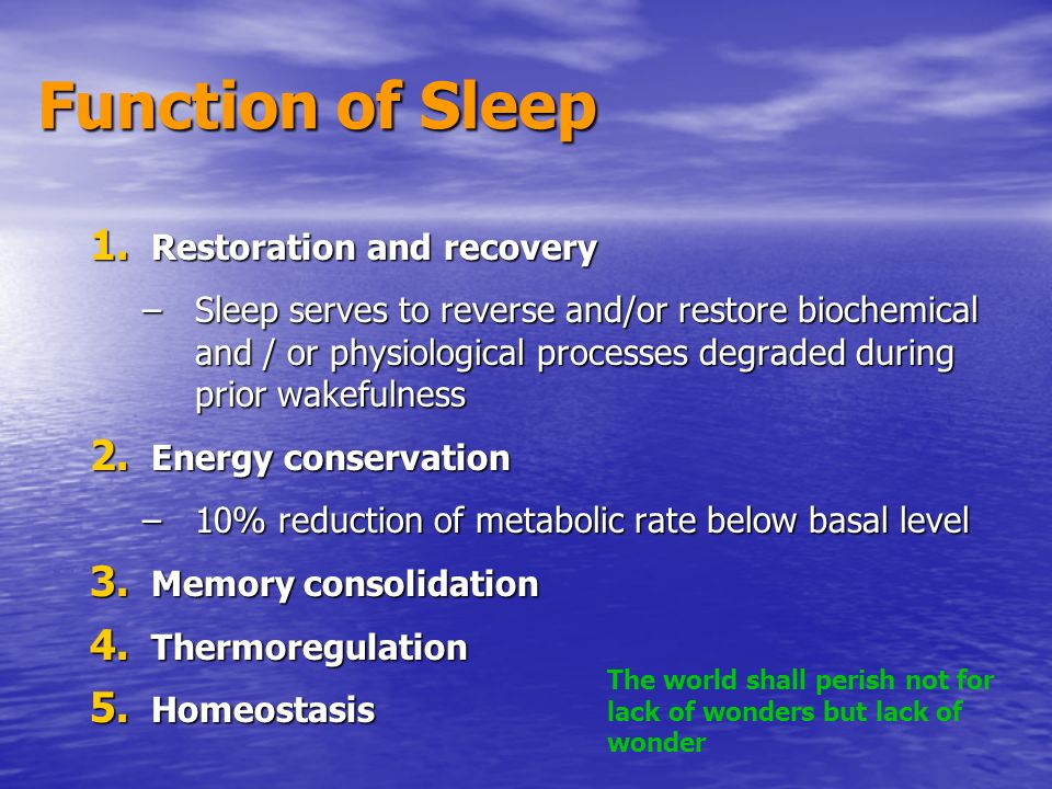 Function of Sleep Restoration and recovery