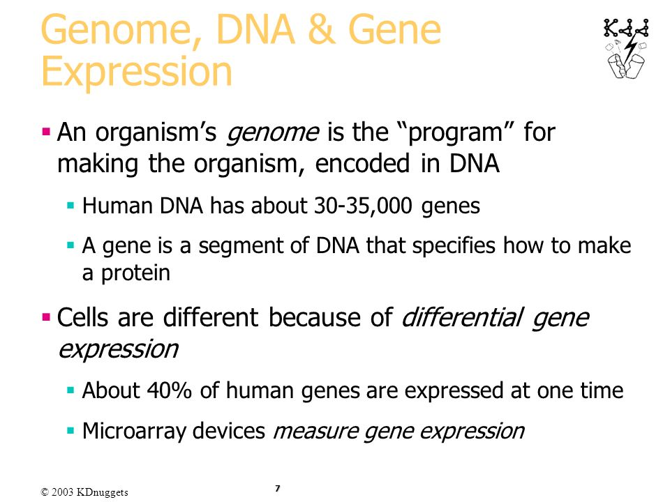 Genome, DNA & Gene Expression