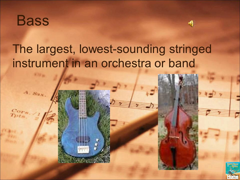 Bass The largest, lowest-sounding stringed instrument in an orchestra or band