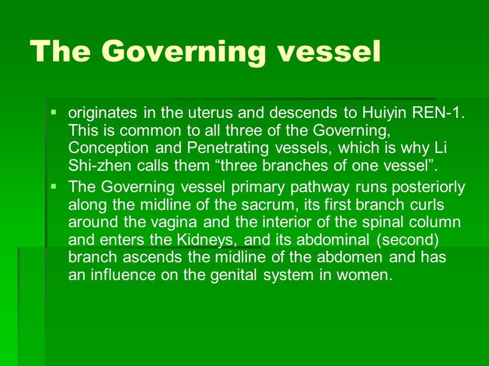 The Governing vessel