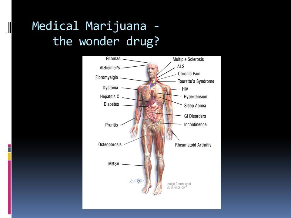 Medical Marijuana - the wonder drug