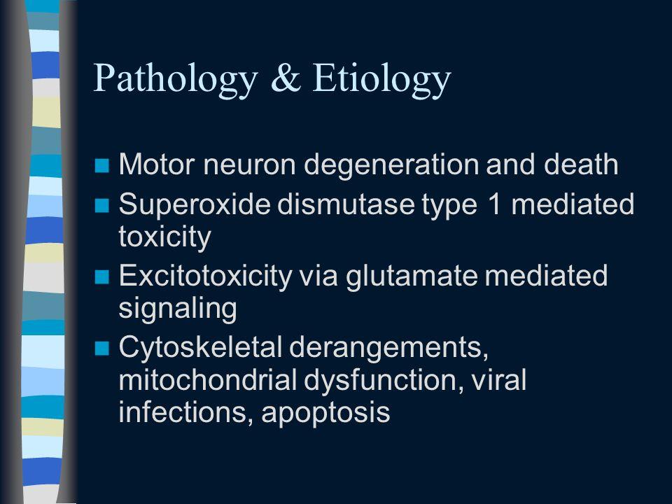 Pathology & Etiology Motor neuron degeneration and death