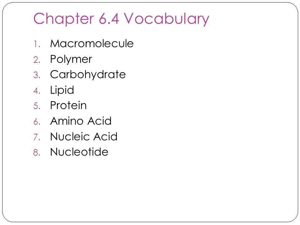 Chapter 6.4 Vocabulary Macromolecule Polymer Carbohydrate Lipid