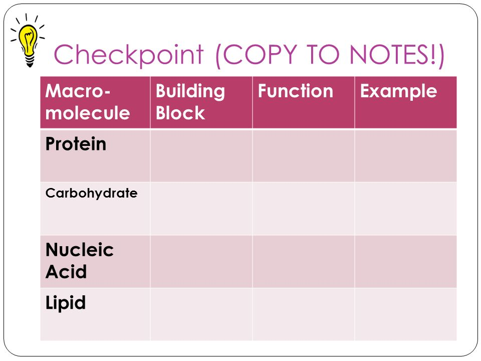 Checkpoint (COPY TO NOTES!)