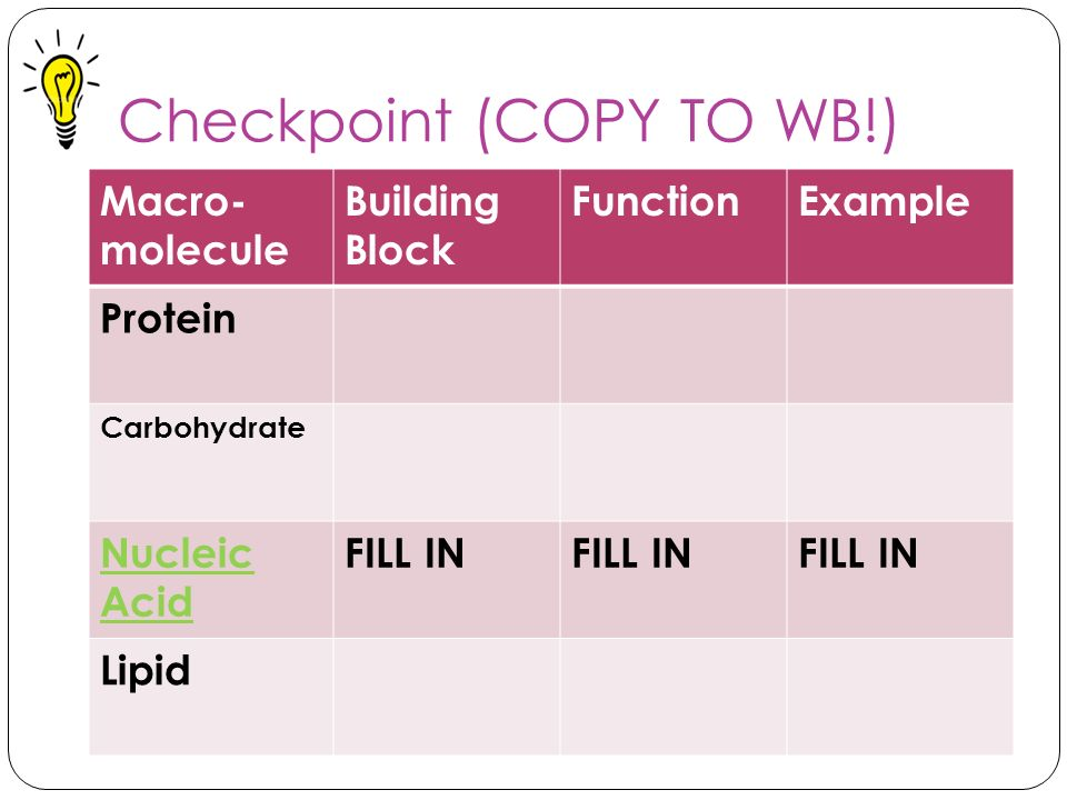 Checkpoint (COPY TO WB!)