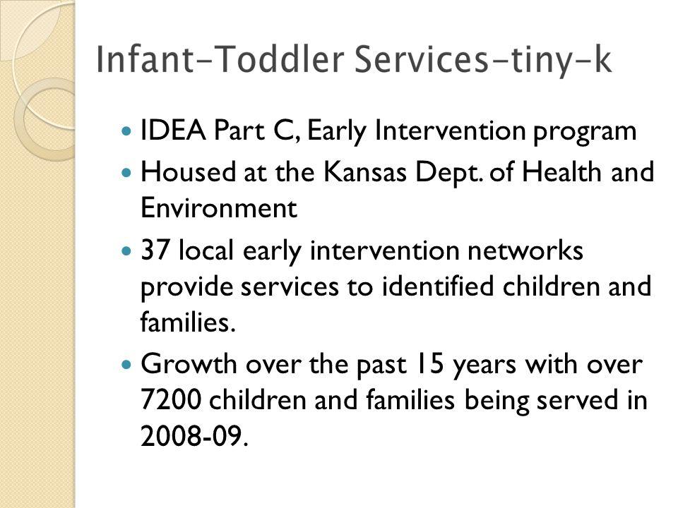 IDEA Part C, Early Intervention program