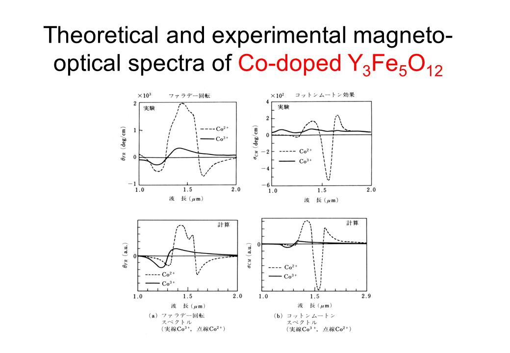 Theoretical and experimental magneto-optical spectra of Co-doped Y3Fe5O12