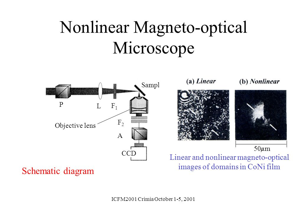 Nonlinear Magneto-optical Microscope