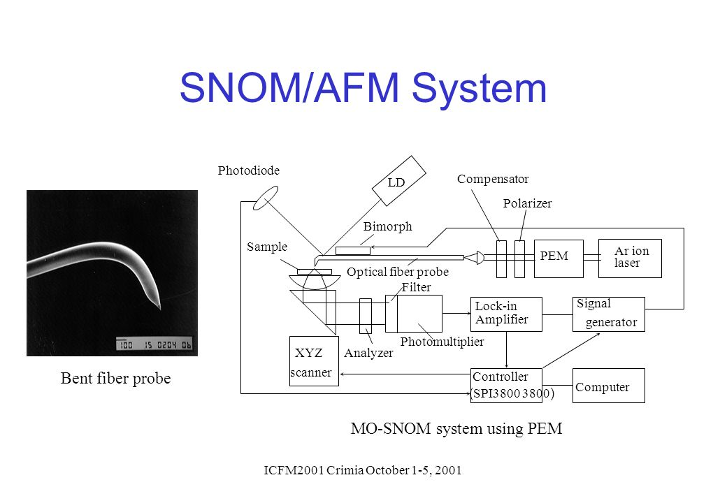 MO-SNOM system using PEM