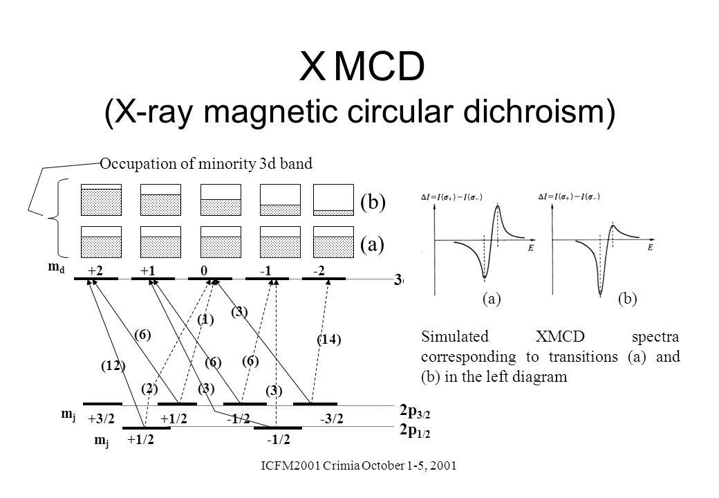 XMCD (X-ray magnetic circular dichroism)