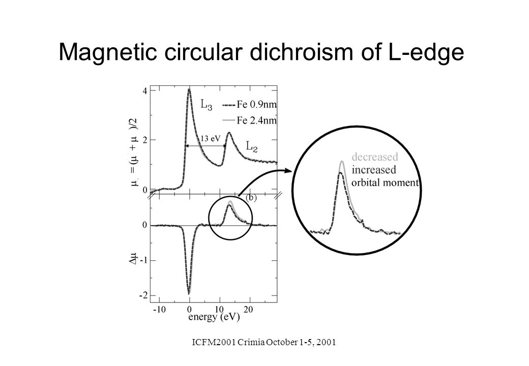 Magnetic circular dichroism of L-edge