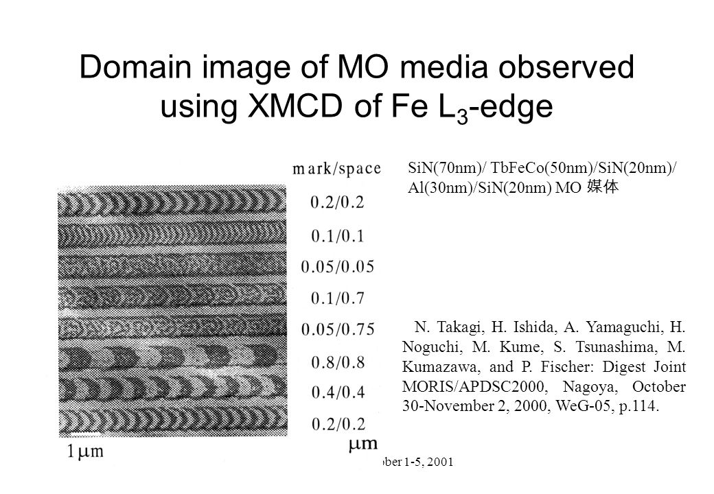 Domain image of MO media observed using XMCD of Fe L3-edge