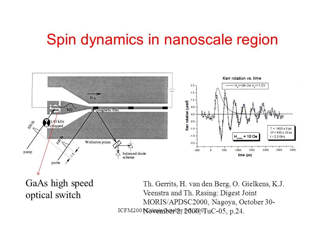 Spin dynamics in nanoscale region