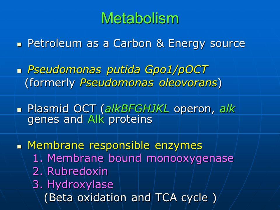 Metabolism Petroleum as a Carbon & Energy source