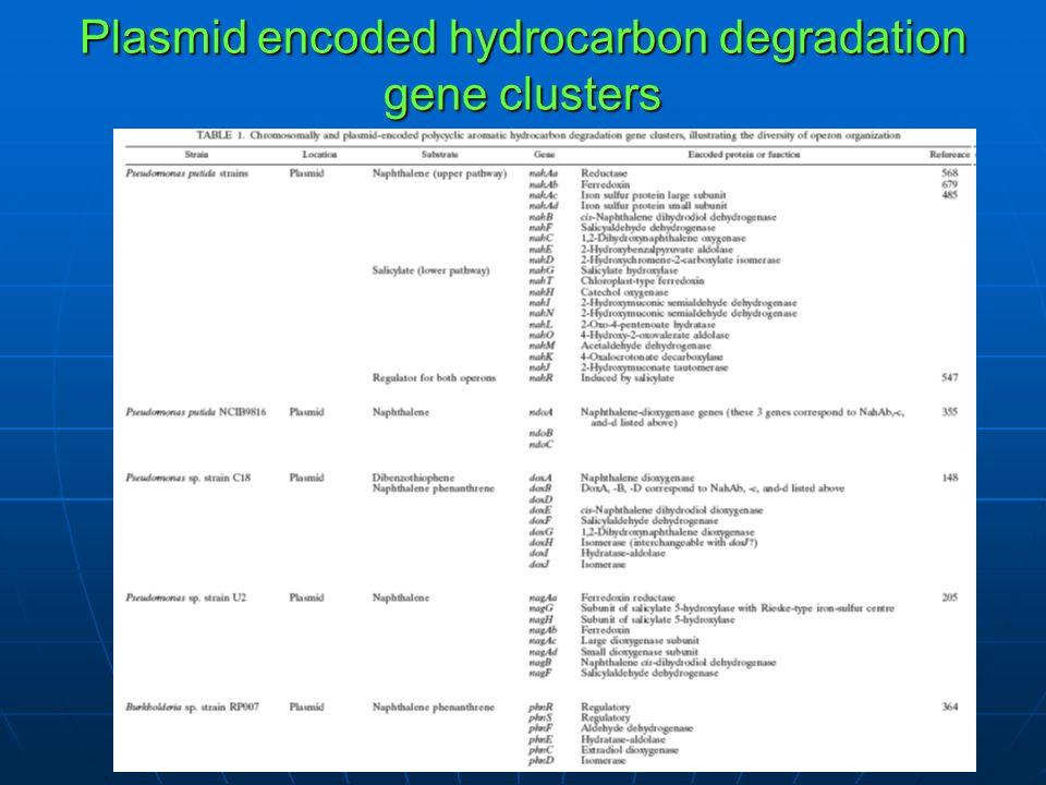 Plasmid encoded hydrocarbon degradation gene clusters