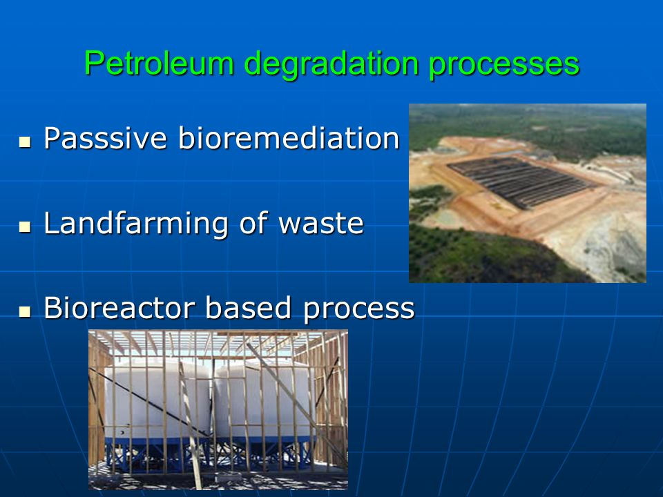 Petroleum degradation processes