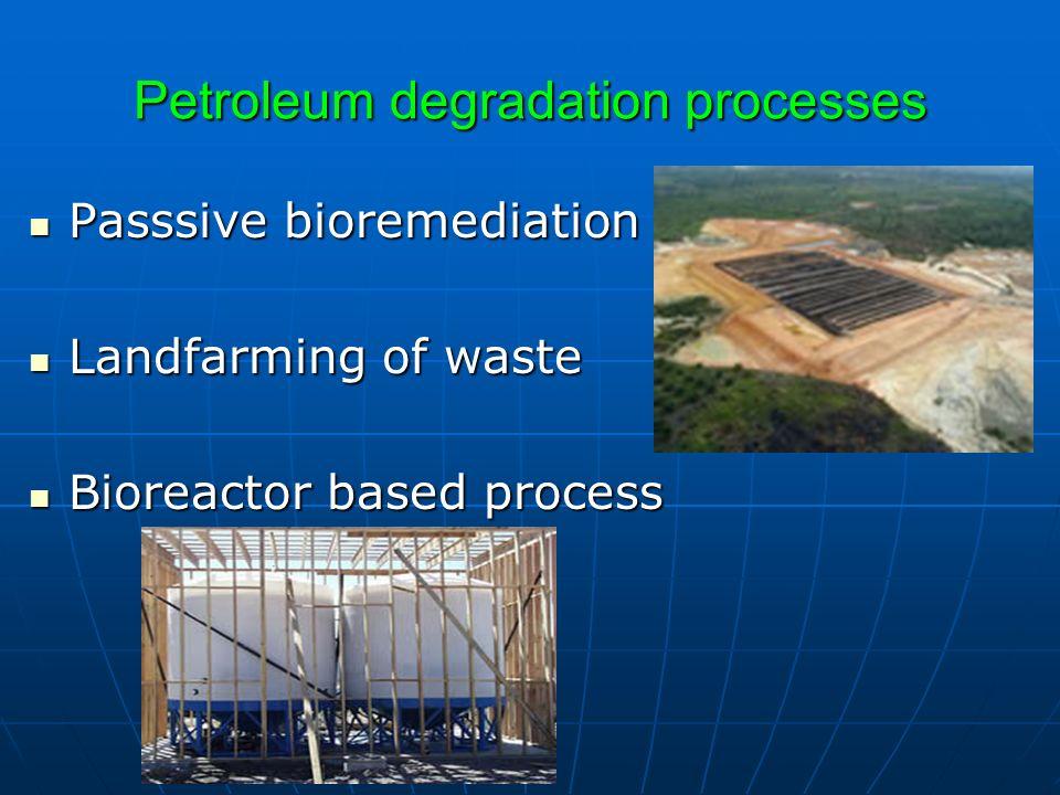 Petroleum degradation processes