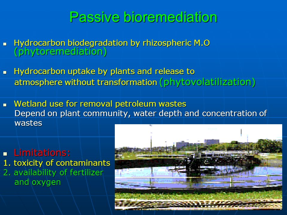 Passive bioremediation