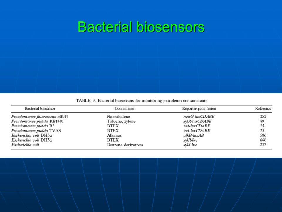 Bacterial biosensors