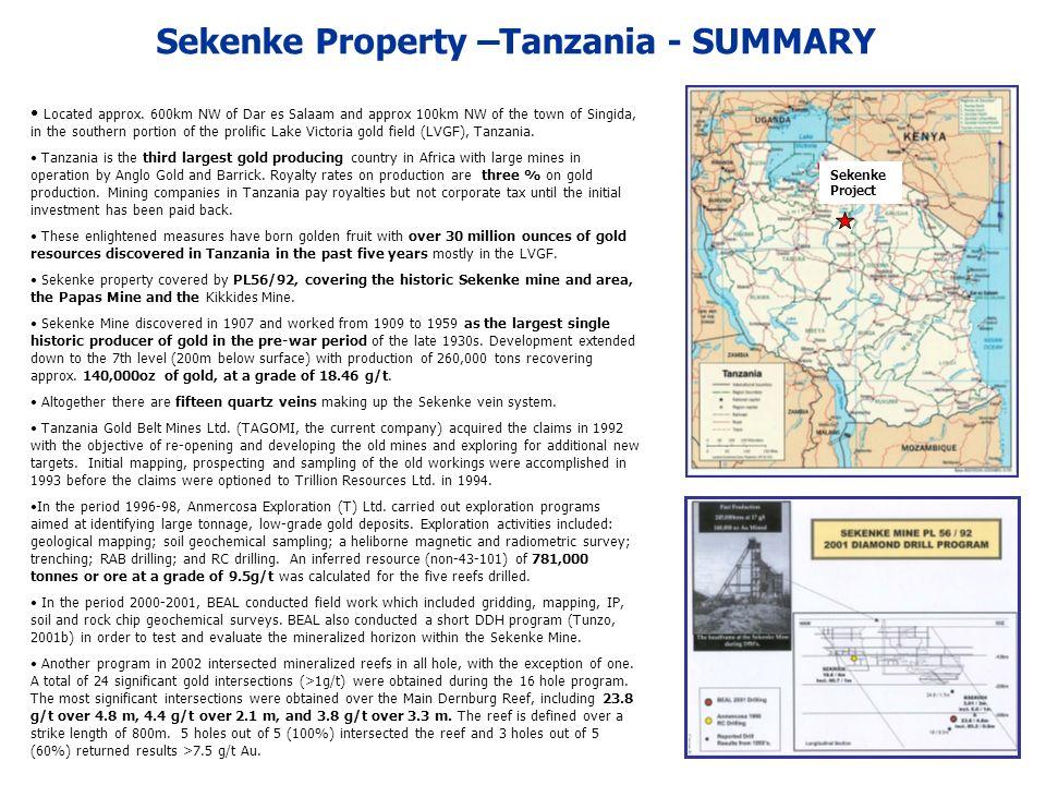 Sekenke Property –Tanzania - SUMMARY