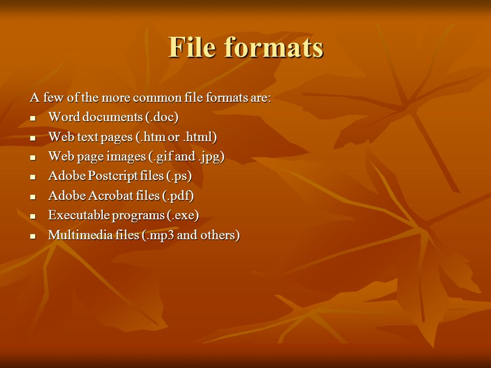 File formats A few of the more common file formats are: