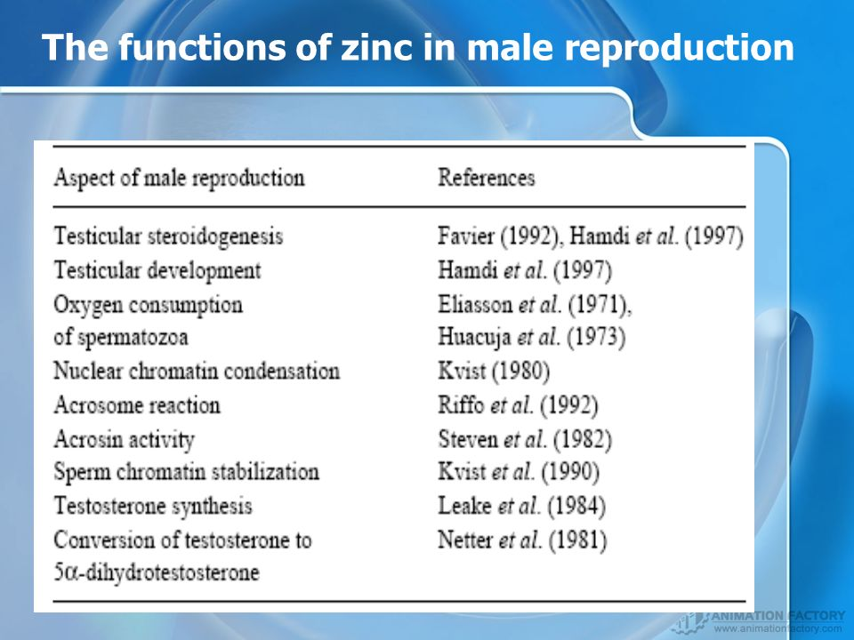 The functions of zinc in male reproduction