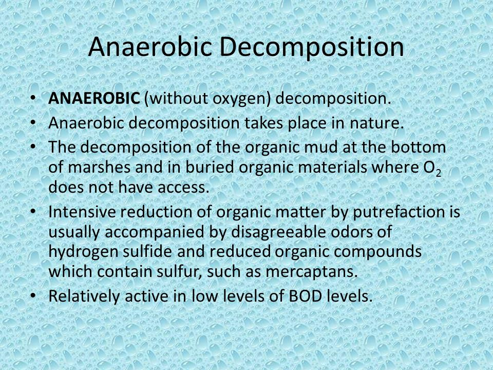 Anaerobic Decomposition