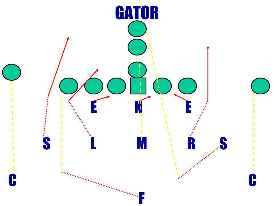 GATOR E N E. S L M R S.