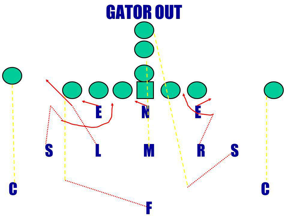 GATOR OUT E N E. S L M R S.