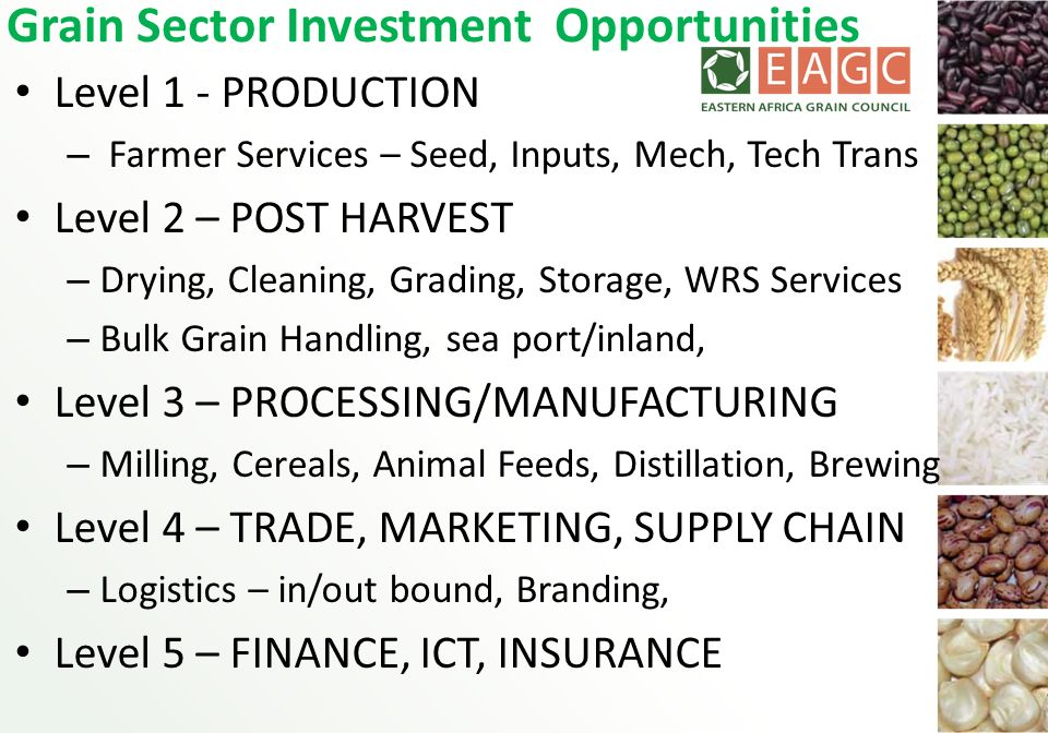 Grain Sector Investment Opportunities