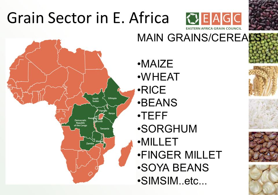 Grain Sector in E. Africa